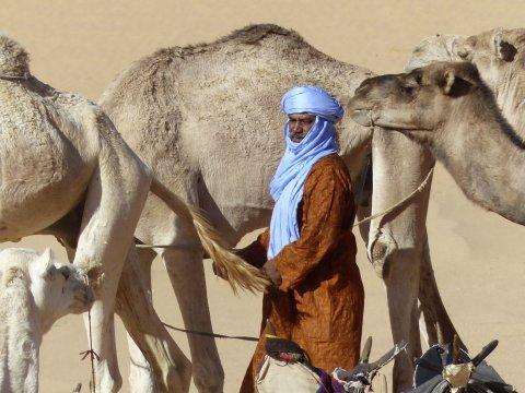 Touareg Trekking Mannschaft mit ihren Kamelen_2