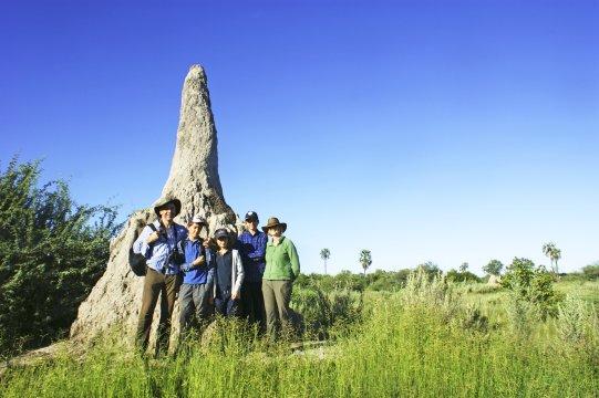 Okavango Delta Termitenhuegel