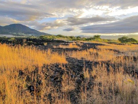 Vulkanische Erde