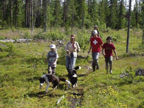Ausflug mit Huskys