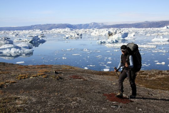 Trekken entlang des Eisfjords