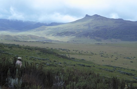Kenia_Aberdare Mtns_Blick auf den La Satima