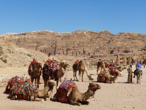 Jordanien Petra Koenigsgraeber Kamele