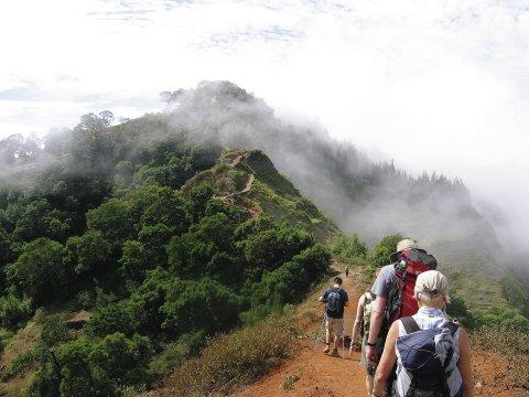 Wanderung Trekking Gruppe