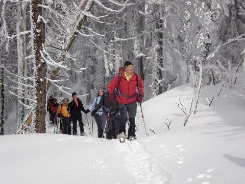 Schneeschuhgehen Bayerischer Wald 3