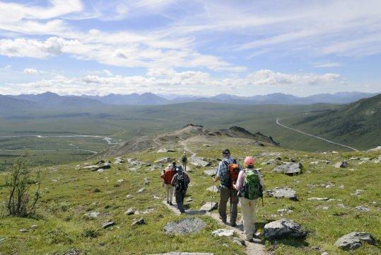 Wanderung Savage River Alpine Trail