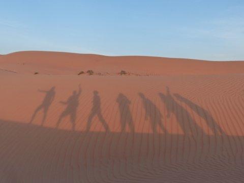 Oman-Wahiba-Sands-Schatten