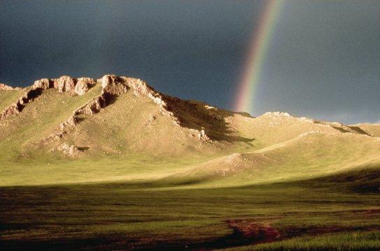 Mongolisches Hochland 2