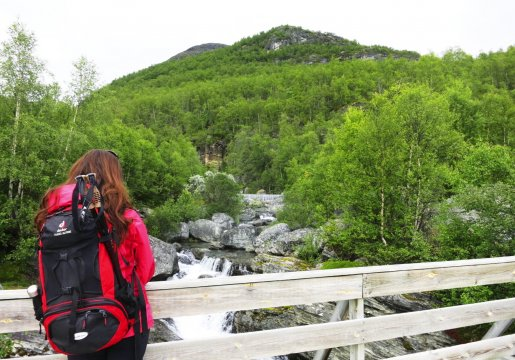 Aurlandsdalen in Fjord Norwegen