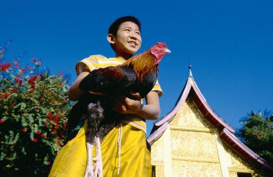 Luang Phrabang 9