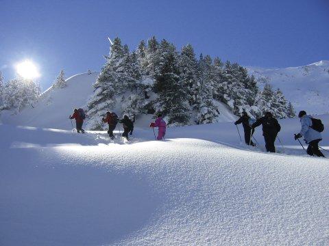 Schneeschuhwanderung 2