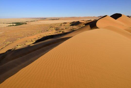 Duenenkamm in der Namib_2