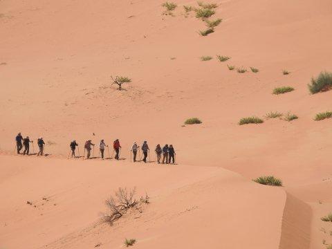 Wandergruppe in der Rub Al-Khali