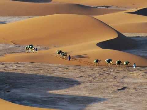 Wueste Karawane Marokko