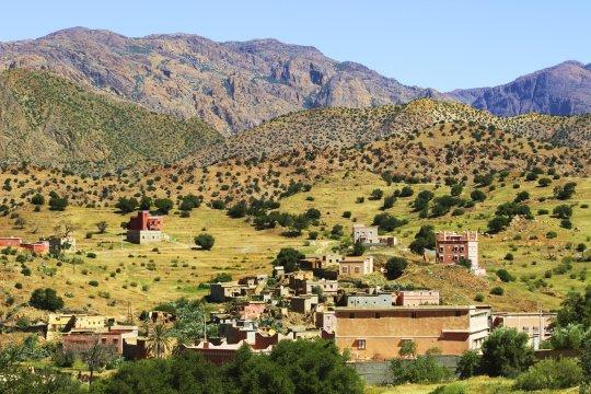 Kleines Dorf im Antiatlas inmitten Argan-Bäumen
