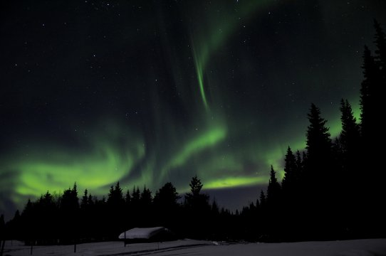 Polarlicht über dem Hof Solberget