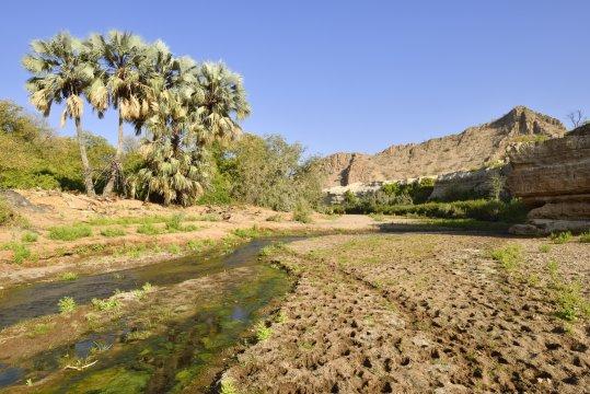 Khowarib Canyon bei Sesfontein_2