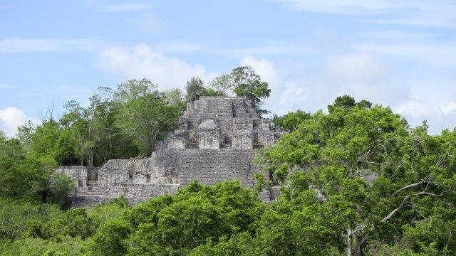 Mexiko Chiapas Calakmul_2