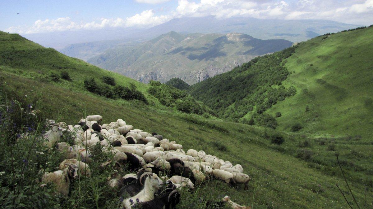 Georgien Armenien Schatzkammer Der Kulturen Hauser Exkursionen