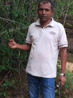 Ravindra Kumara Reiseleiter Porträt