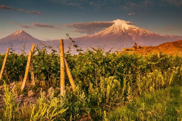 Armenien - Blick auf den Ararat; Foto: Alex Marakhovets/Shutterstock.com