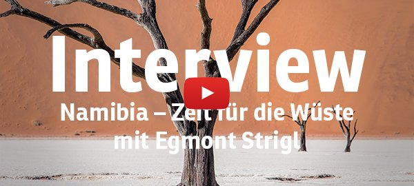DeadVlei-Baum-Portrait-youtube; Foto: Thomas Ehl